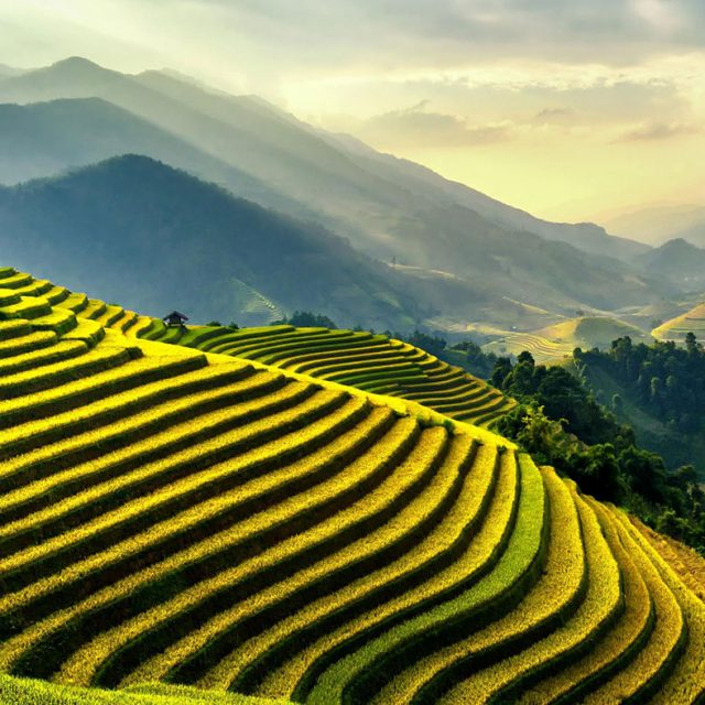 Vietnam running experience